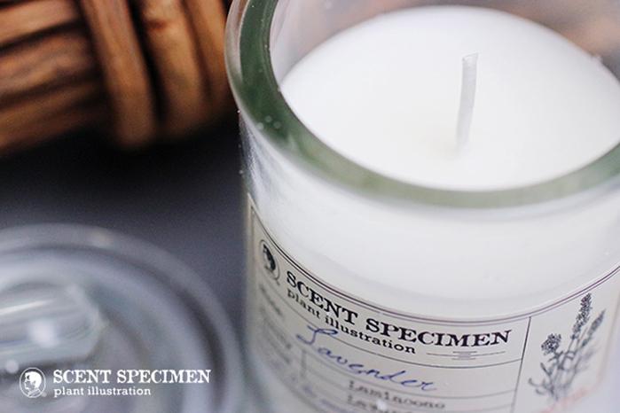 (複製)賽先生科學工廠|氣味標本香氛蠟燭-藍鈴香
