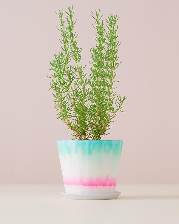(複製)賽先生科學工廠|氣味標本香氛蠟燭-薰衣草