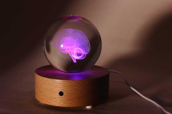 賽先生科學工廠|透視大腦水晶紙鎮禮盒(含發光底座)