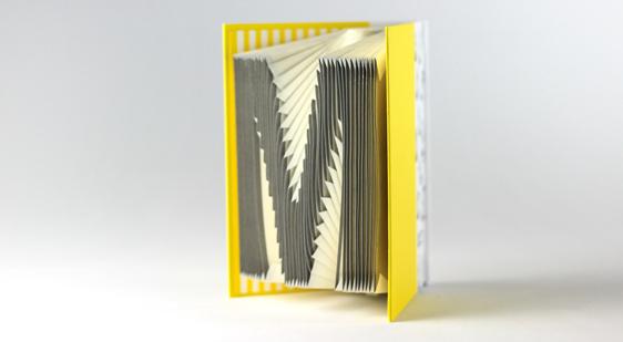 賽先生科學工廠|字母摺紙書(鮮黃)