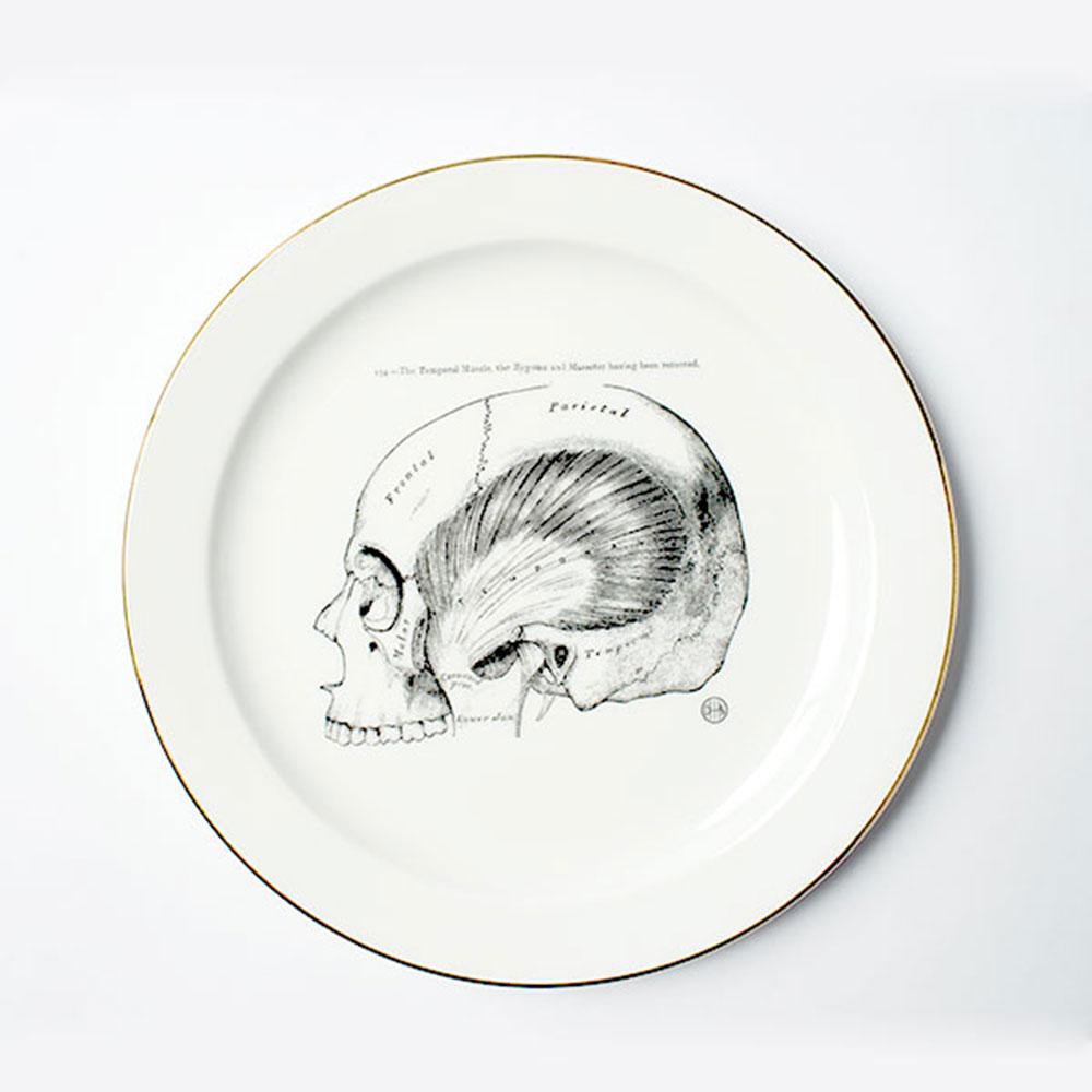 賽先生科學工廠 東海醫院-頭骨瓷盤