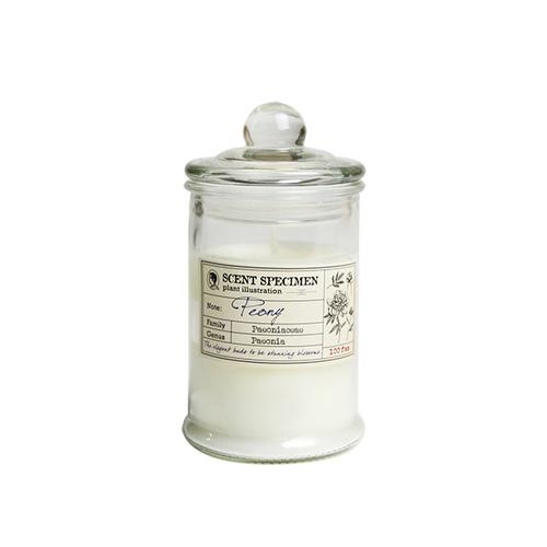 賽先生科學工廠|氣味標本香氛蠟燭-牡丹