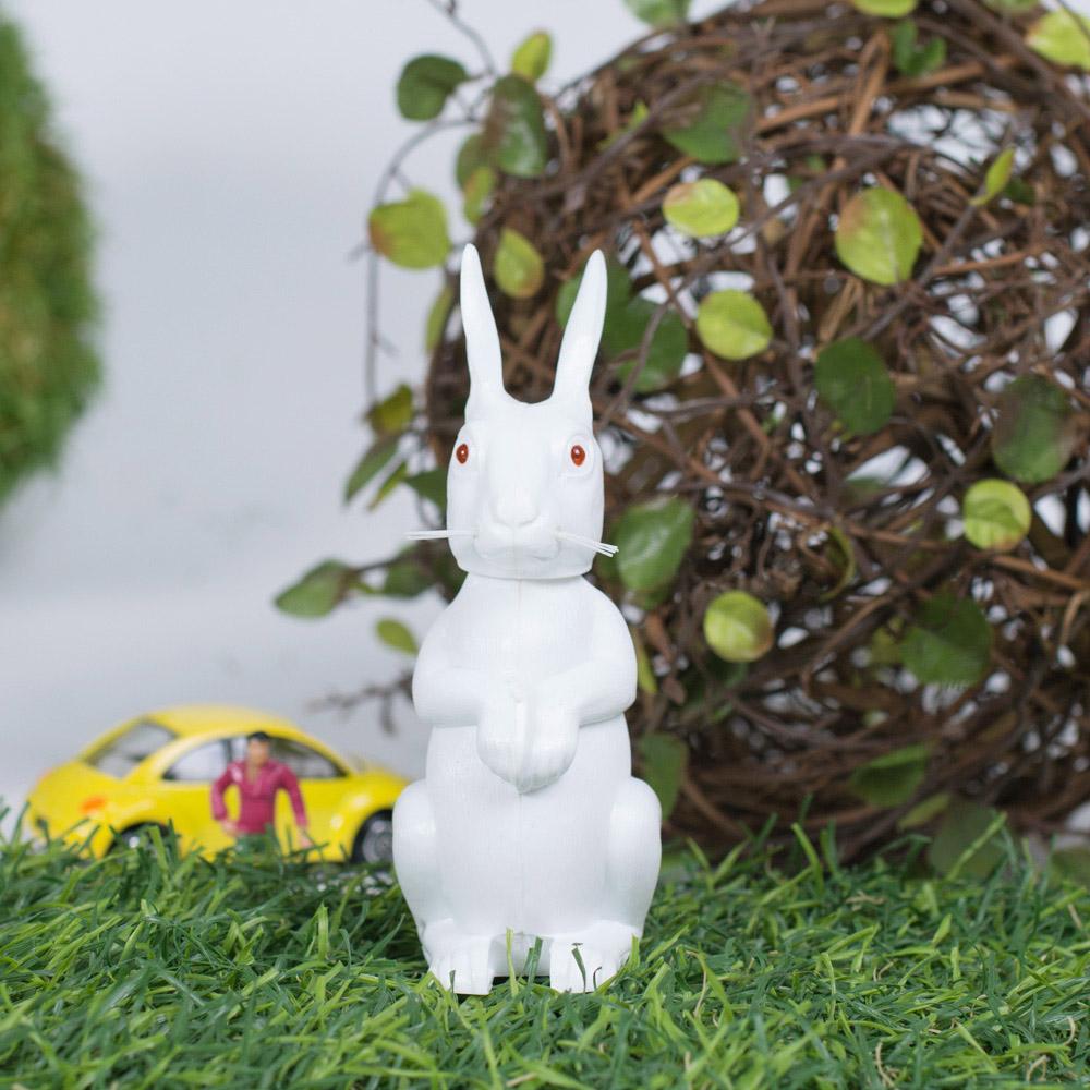 賽先生科學工廠|德國動物搖頭派對-白兔