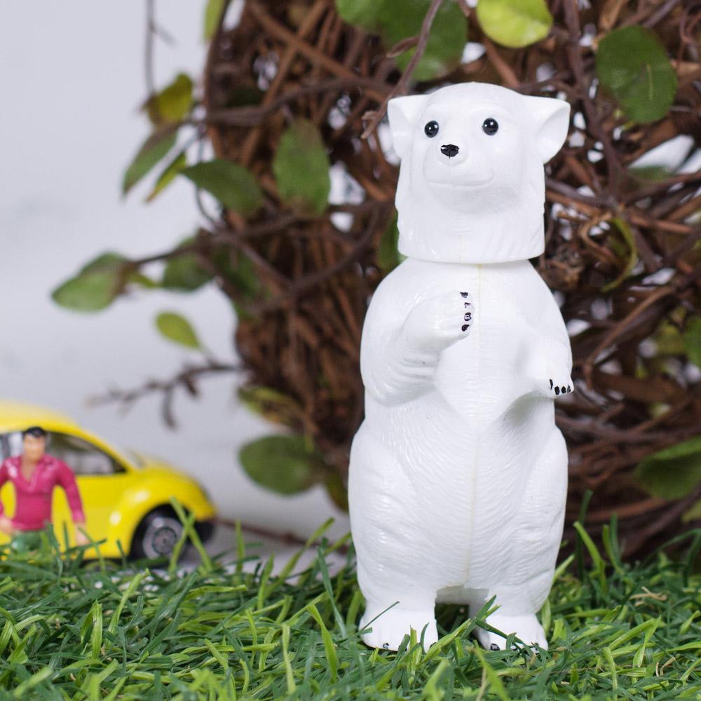 賽先生科學工廠|德國動物搖頭派對-北極熊