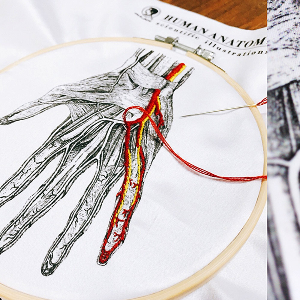賽先生科學工廠│After School - 人體血管分布刺繡套組