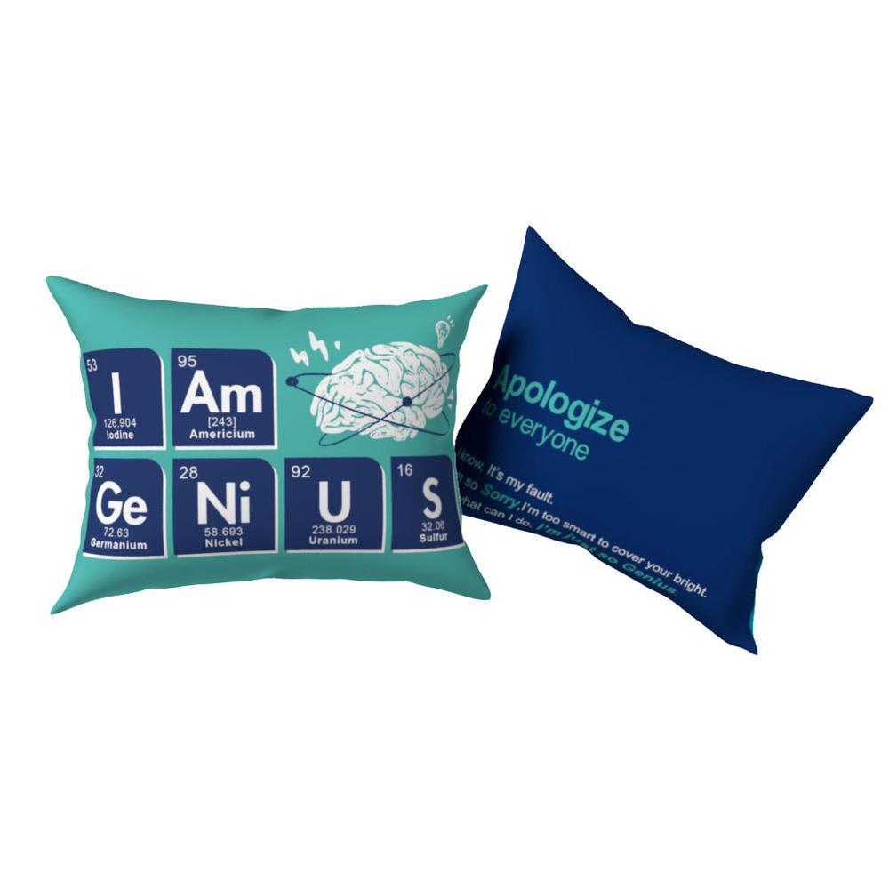 賽先生科學工廠|趣味化學元素雙面抱枕 ( 我是天才 I Am Ge Ni U S)