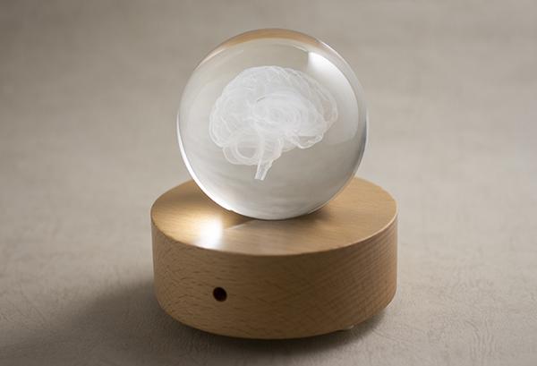 賽先生科學工廠|透視大腦水晶組(含發光底座)