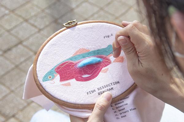 賽先生科學工廠 After School - 生物解剖羊毛氈刺繡套組
