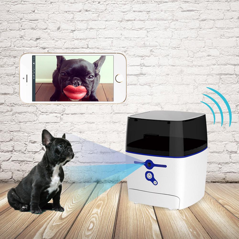 QB Tech Feed Me 飛米智慧寵物互動餵食器(綠色)