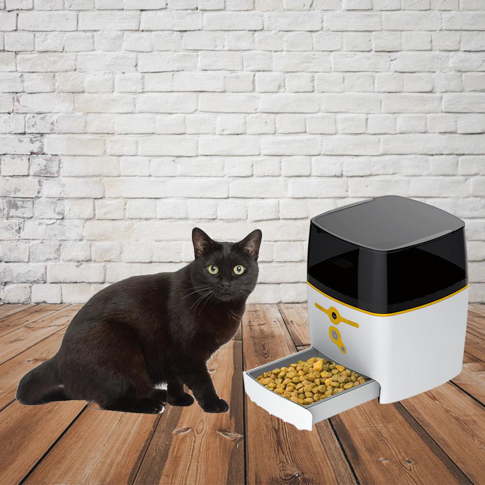 QB Tech Feed Me 飛米智慧寵物互動餵食器(藍色)