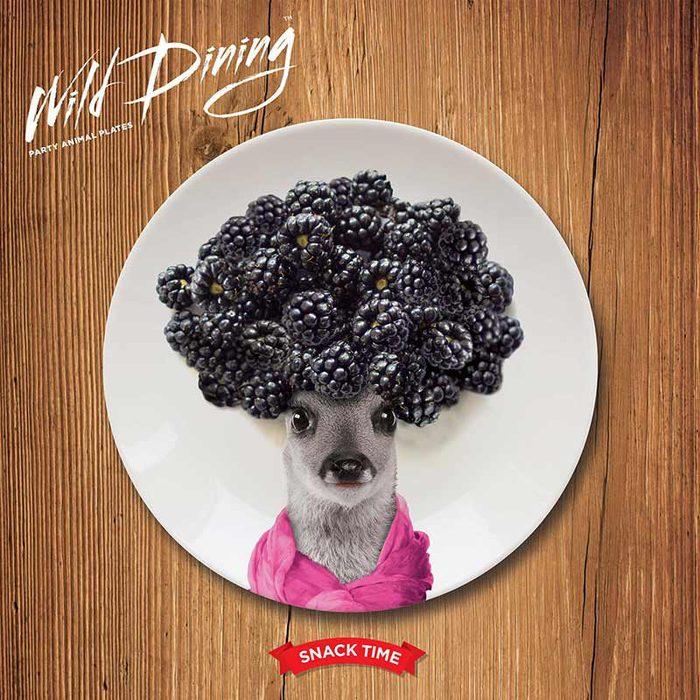 (複製)Mustard | 動物餐盤 7 吋 - 龐克海豹