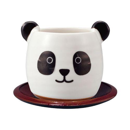 日本 sunart │茶杯組 - 貓熊