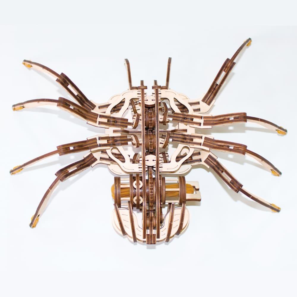 EWA 動力模型 - 暴走蜘蛛
