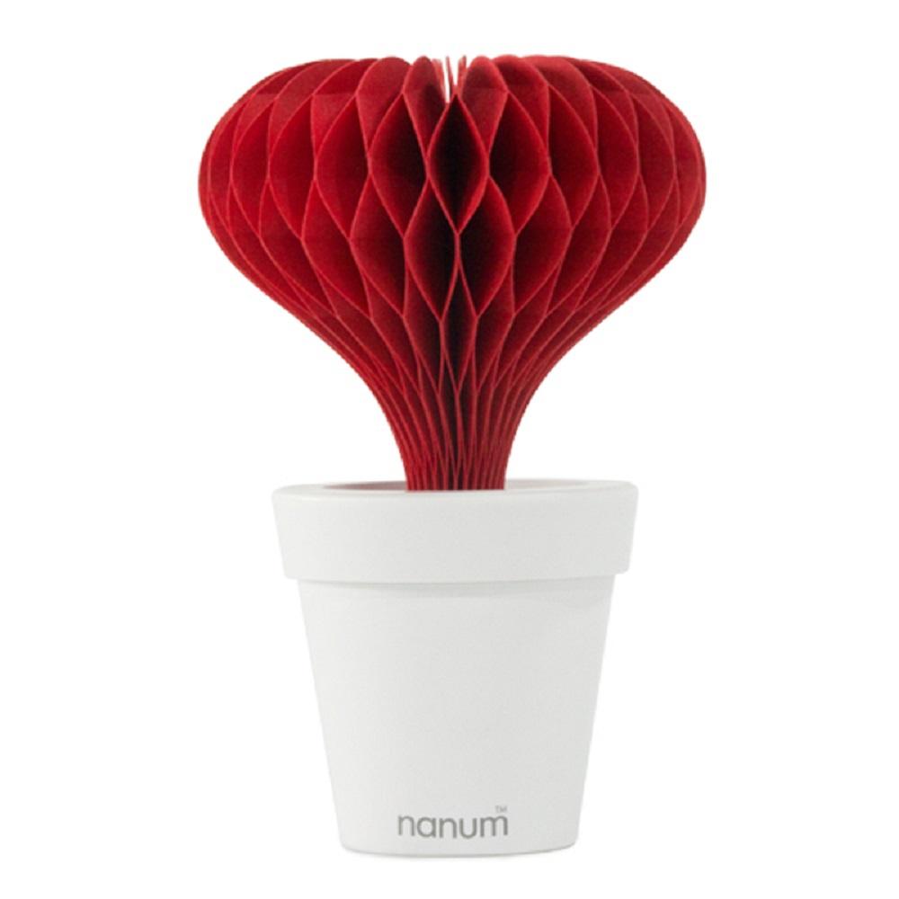 Nanum   超涵水室內皮膚保濕器 (愛心)