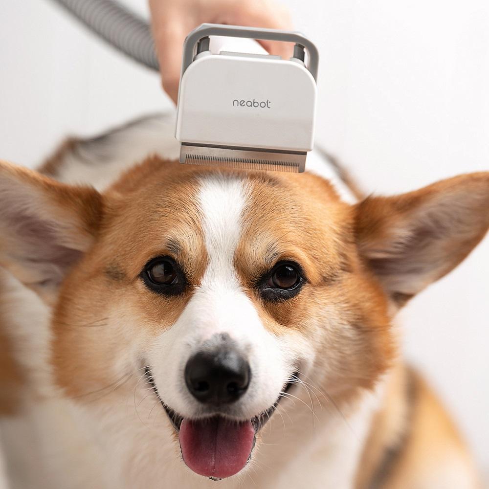 【集購】Neabot P1 Pro 5合1寵物理毛美容儀(全台首賣)