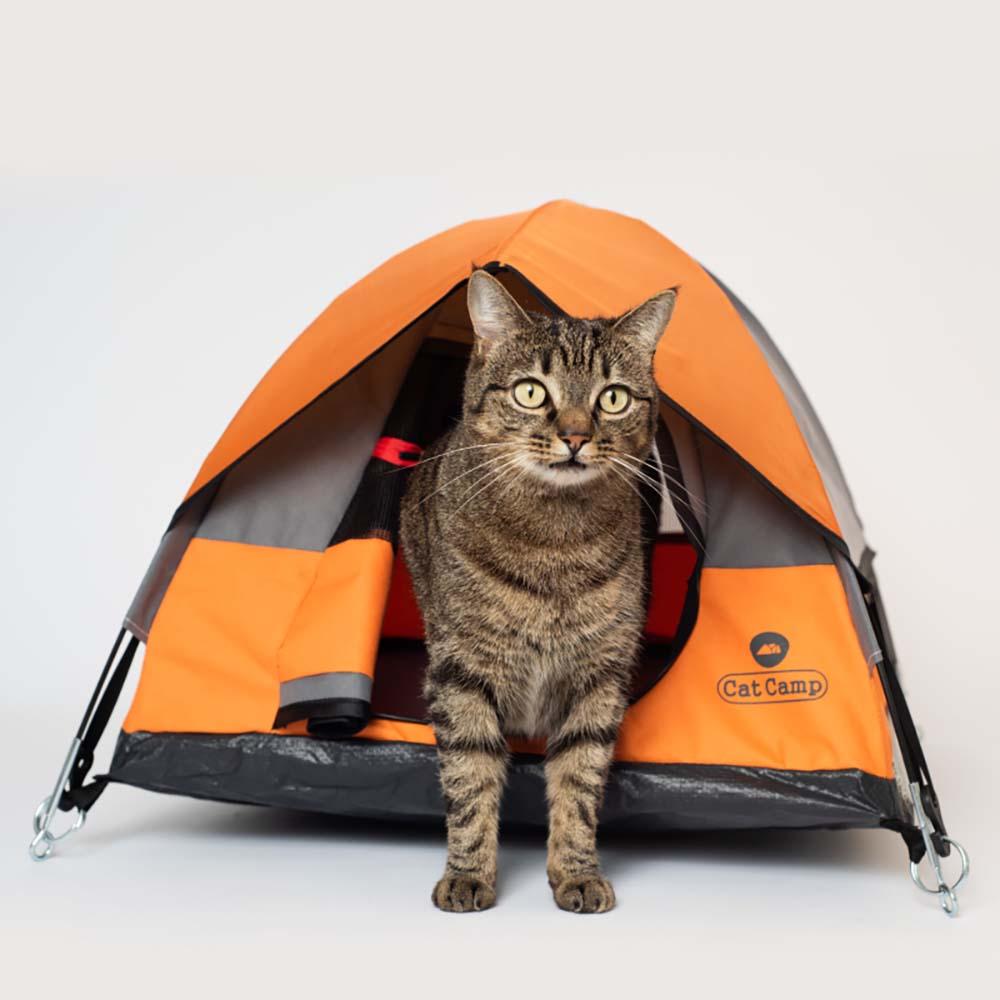 Cat Camp|貓帳篷 - 黑色