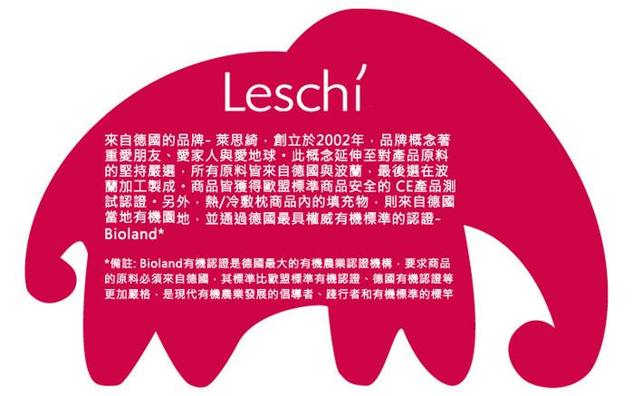 德國萊思綺Leschi|舒緩疲勞 熱敷/冷敷眼罩(貓頭鷹造型-橘紅色)