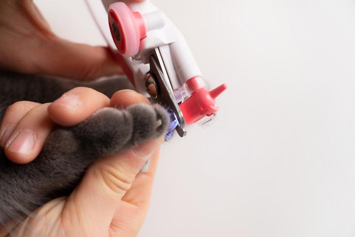 【集購】韓國 WALKINN WITH | Lookut 寵物專用LED指甲剪
