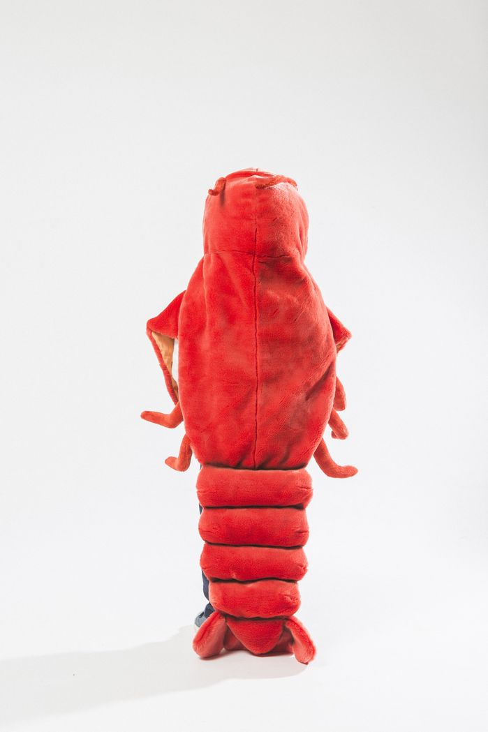 Wild & Soft | 動物造型披風-龍蝦