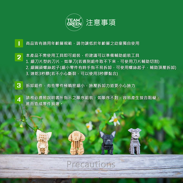 Team Green|3D木拼圖 哈利波特