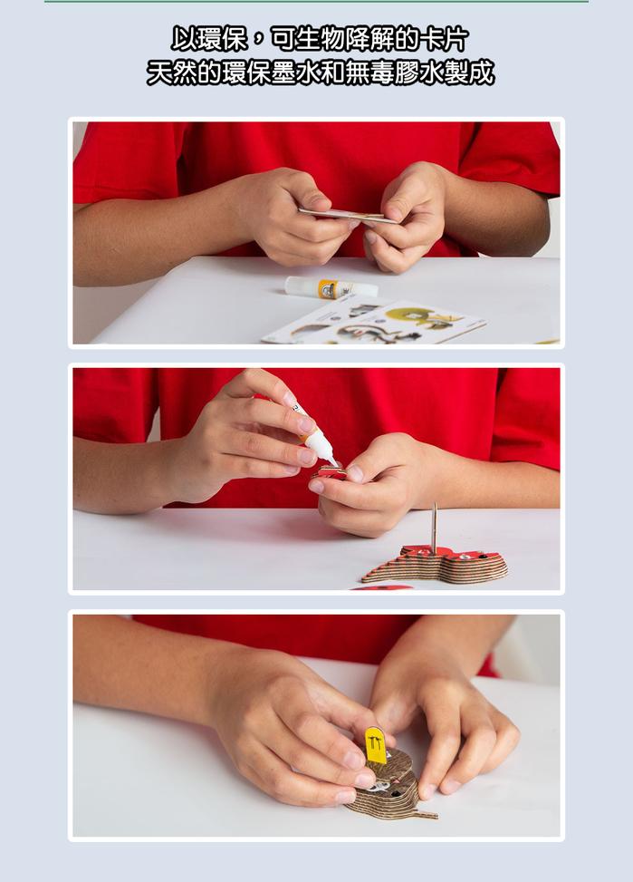 (複製)DODOLAND |3D紙板拼圖-企鵝