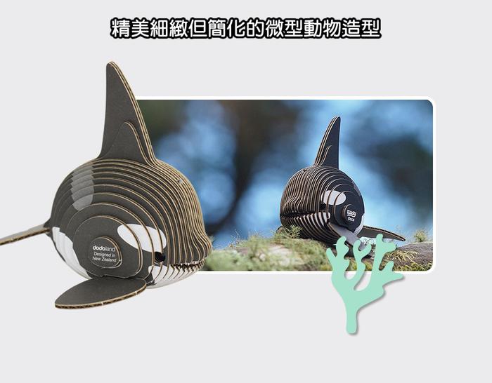 DODOLAND  3D紙板拼圖-虎鯨