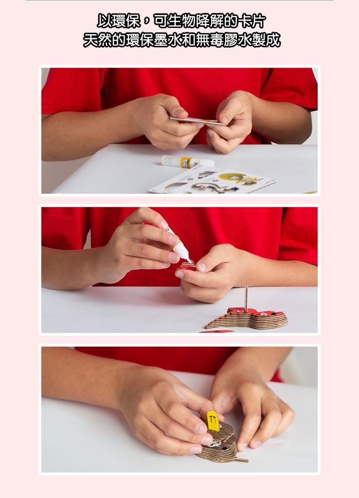(複製)DODOLAND  3D紙板拼圖-鸚鵡