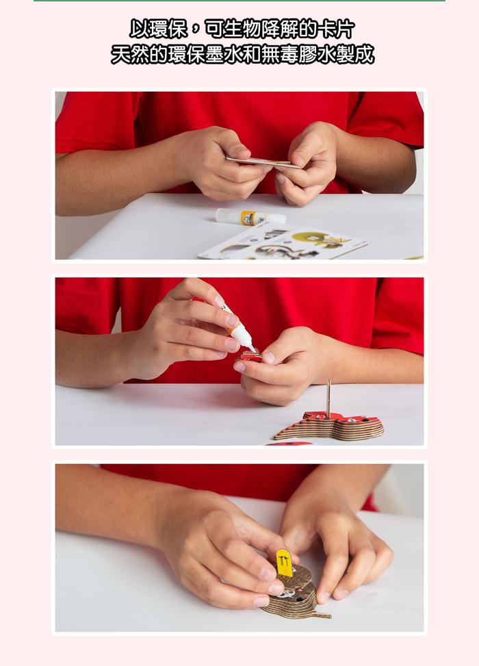 (複製)DODOLAND  3D紙板拼圖-鳳頭鸚鵡