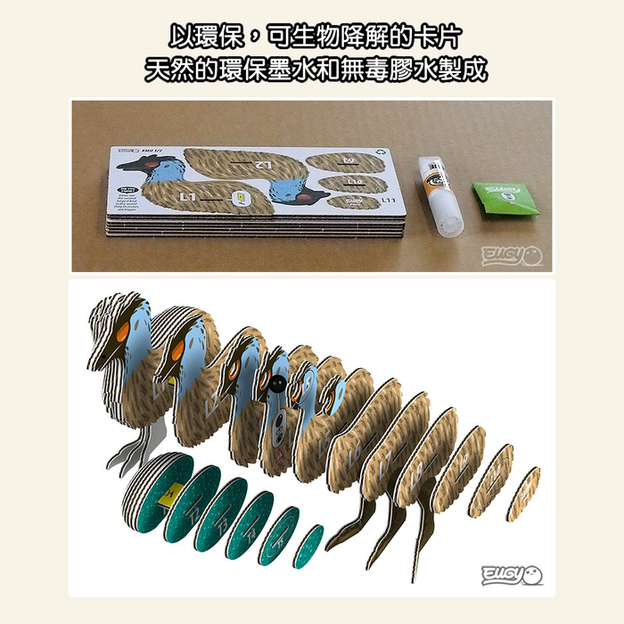 (複製)EUGY|3D紙板拼圖-啄羊鸚鵡