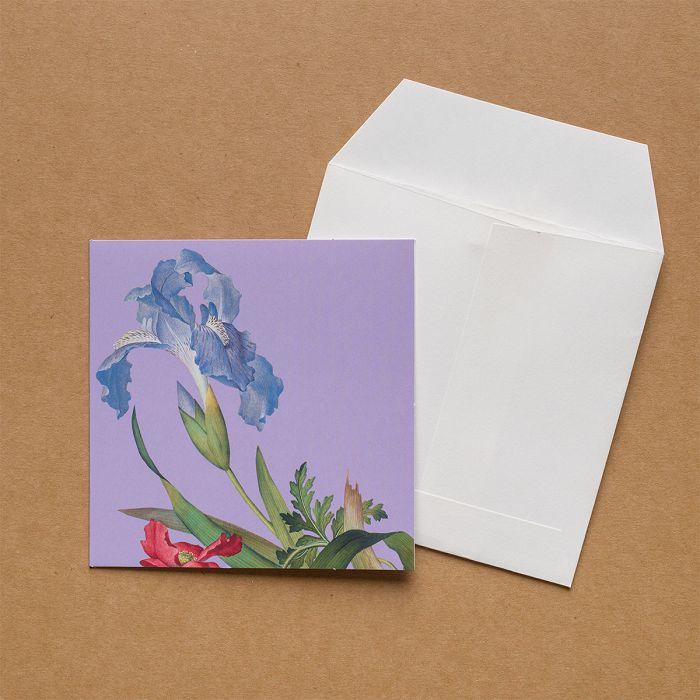 (複製)故宮精品|仙萼長春·雞冠花 萬用卡