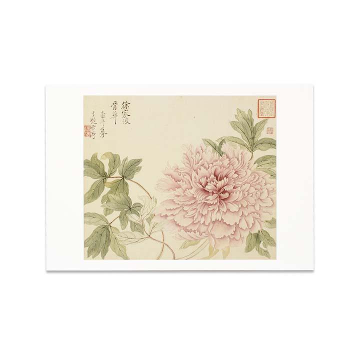 (複製)故宮精品   圖卡-蔣延錫 花卉(牡丹)