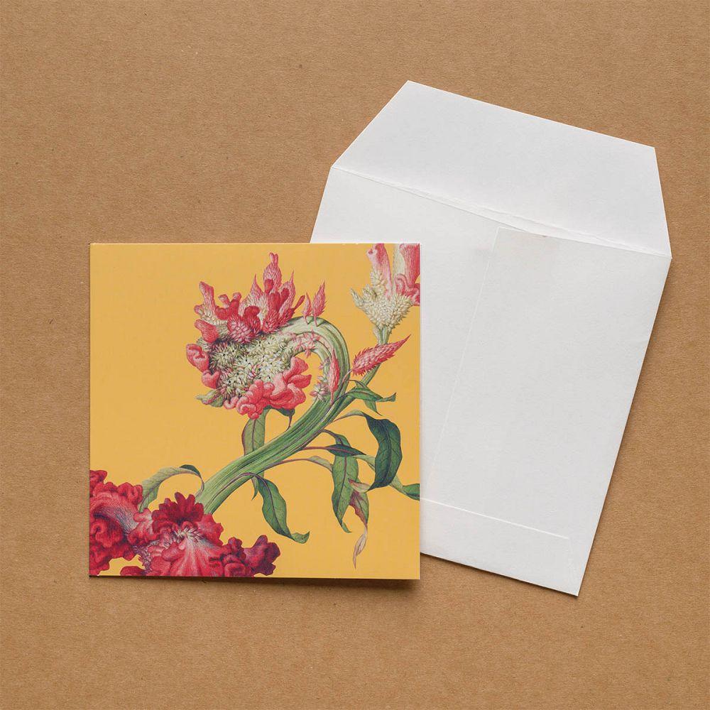 故宮精品|仙萼長春·雞冠花 萬用卡