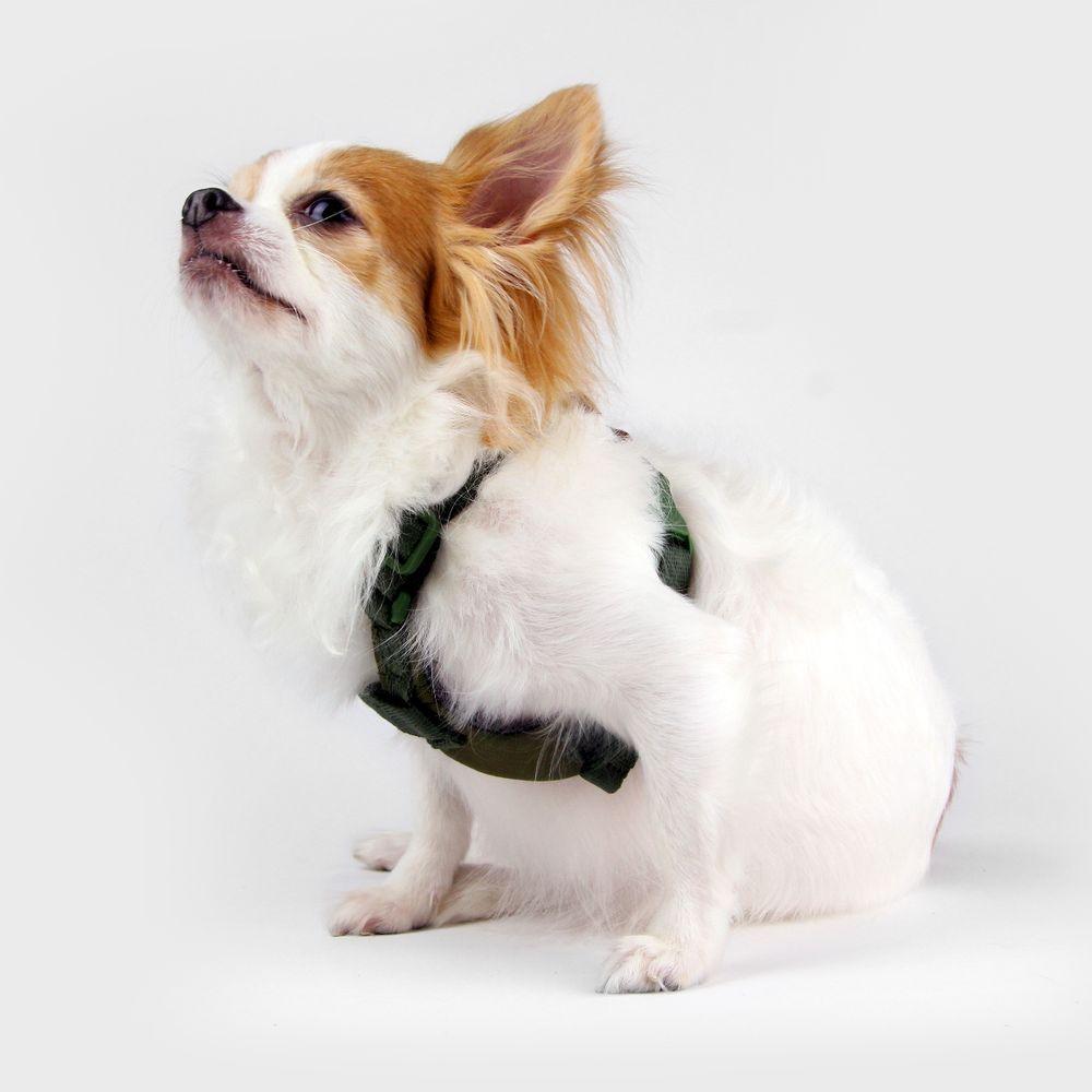 SPUTNIK|寵物胸背帶 Harness 綠 (S)