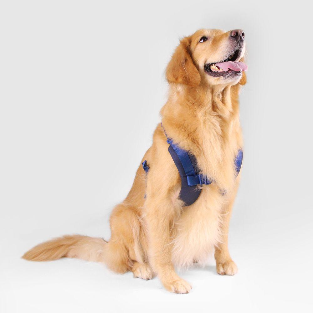 SPUTNIK|寵物胸背帶 Harness 藍 (L)