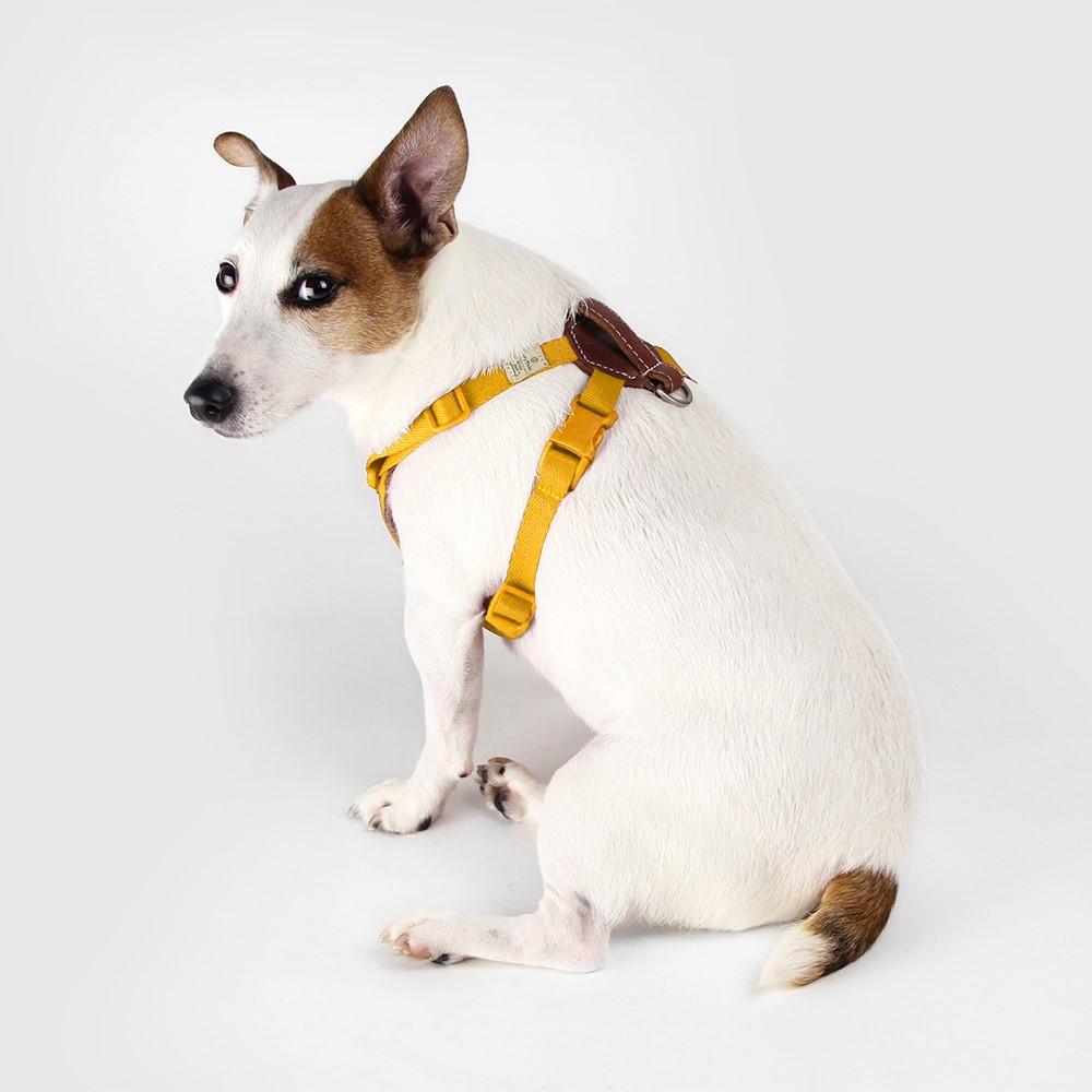 SPUTNIK|寵物胸背帶 Harness 黃 (S+)