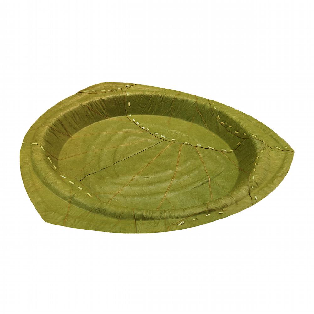 利芙樹葉餐盤|盒裝奧列安大圓盤
