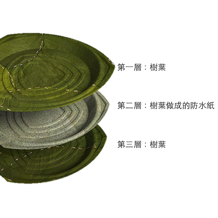 利芙樹葉餐盤|盒裝奧列安小圓盤