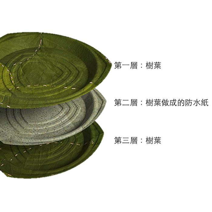 利芙樹葉餐盤|盒裝伊祖米小方盤