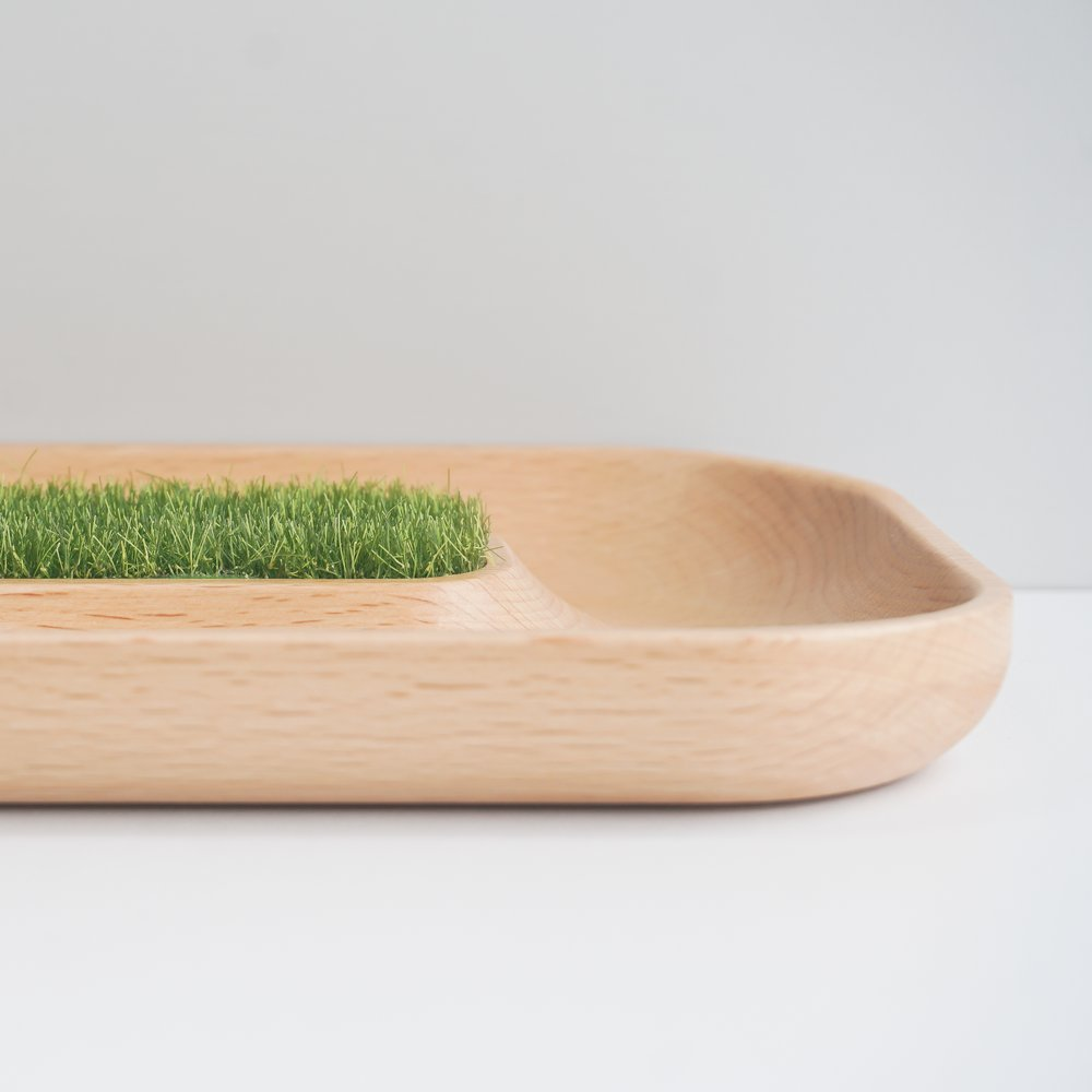 TOSMU 童心木|小物收納盤-沙漠綠洲