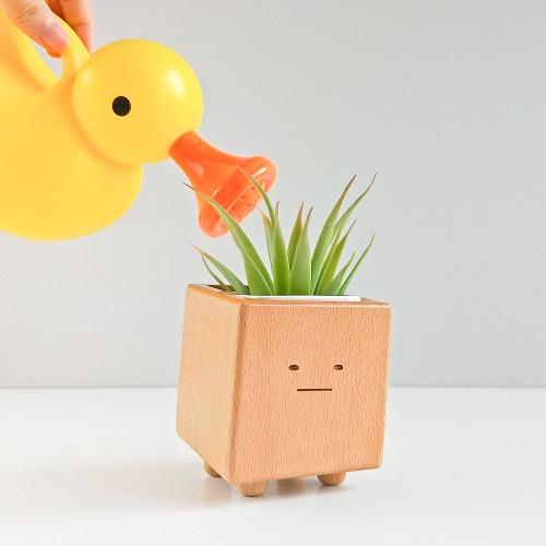TOSMU 童心木|小盆獸盆栽