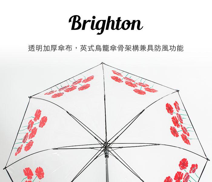 (複製)A.Brolly 亞伯尼|Brighton 系列 silent moment 寂靜城市 摩登紅