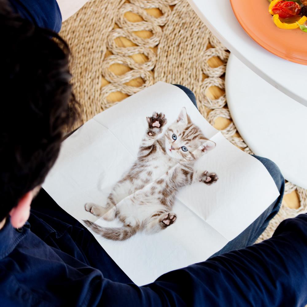 英國 Suck UK 貓咪餐巾紙