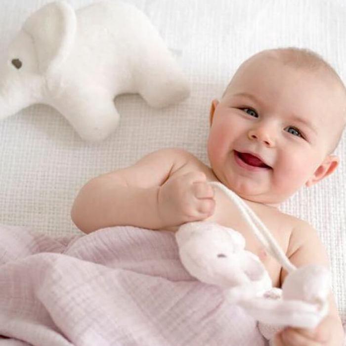Petit Stellou|可愛小象床邊吊飾