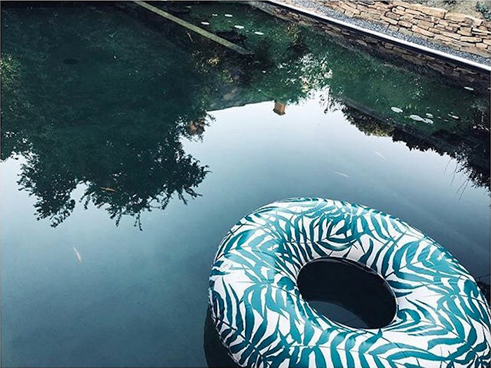 The nice fleet|綠色海草水彩塗鴉泳圈