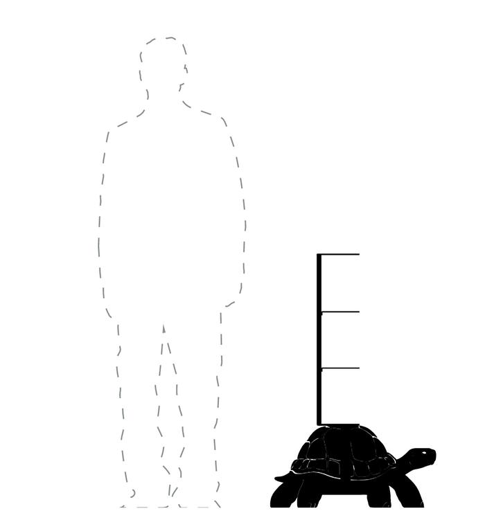 Qeeboo|烏龜造型書架(3色可選)