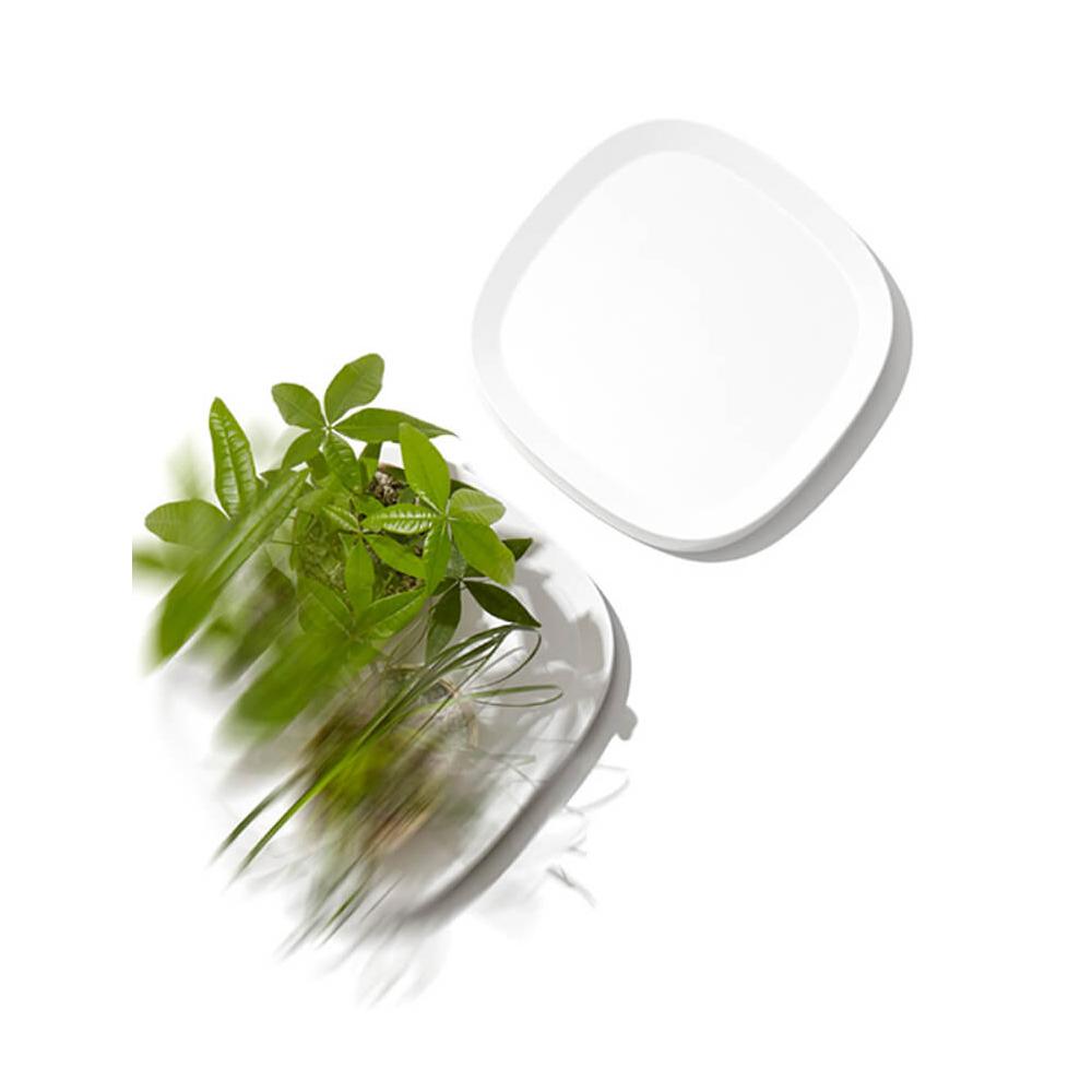 tidy|可移動盆栽托盤 ( 白色 / 小 )