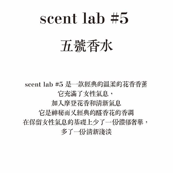 (複製)Scentlab 香氛實驗室|星星香氛吊飾 (英國梨與小蒼蘭)