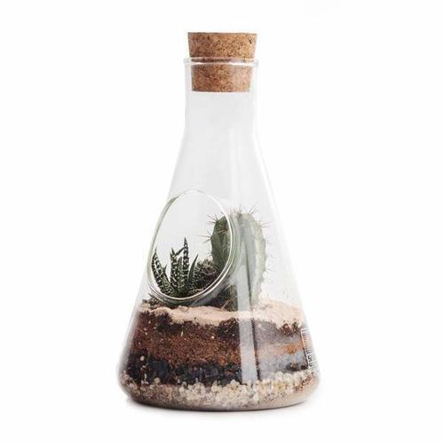 SUCK UK|玻璃三角燒杯植物盆
