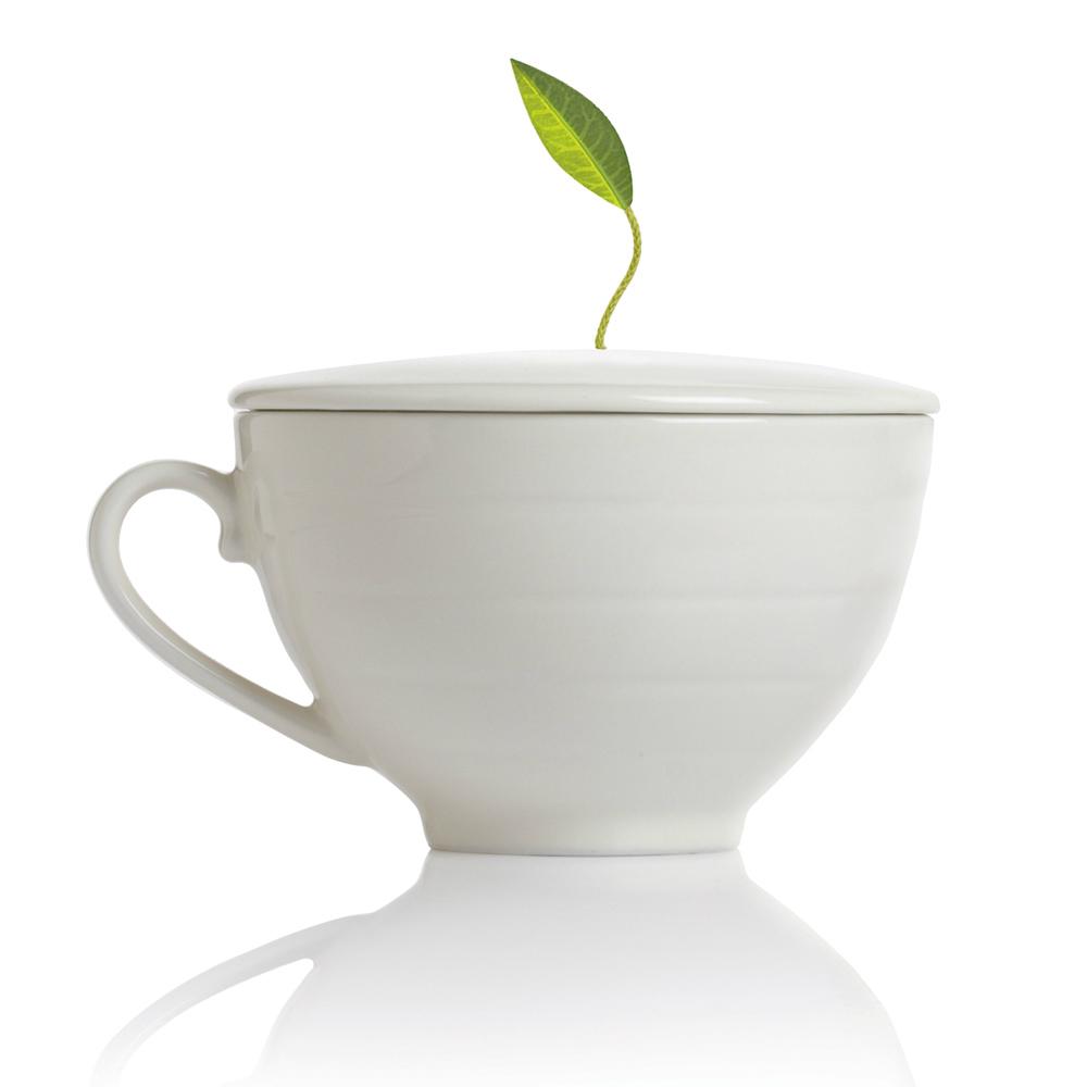 Tea Forté|白瓷附蓋咖啡杯
