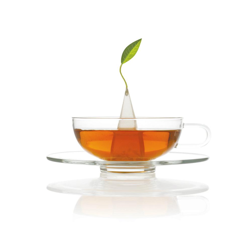 Tea Forté|Sontu 精緻玻璃茶杯 & 印花茶碟